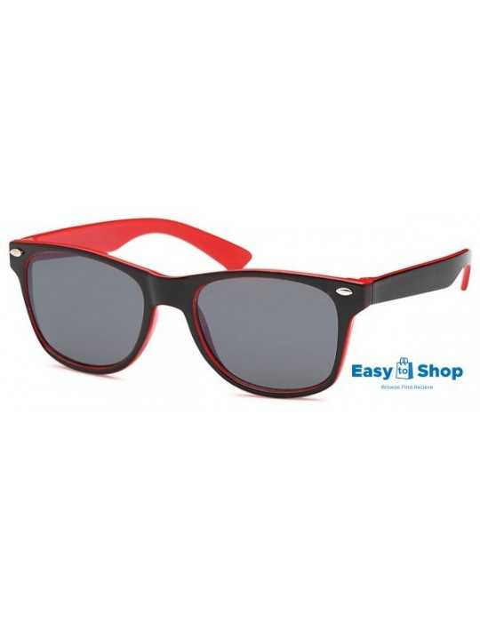 Mini Wayfarer With 2 Tone Frame